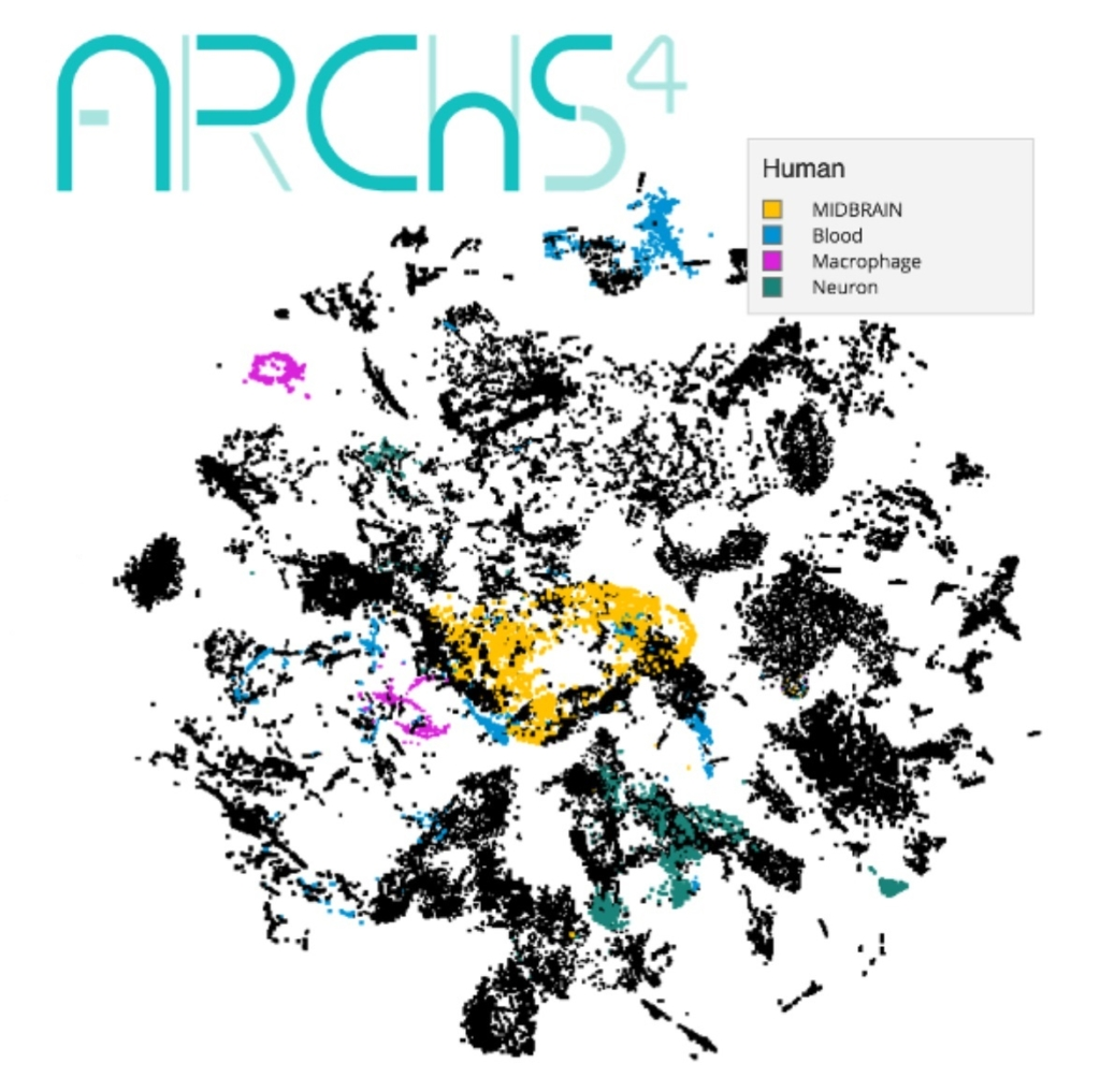 a.r.c.h.s. 4 data map